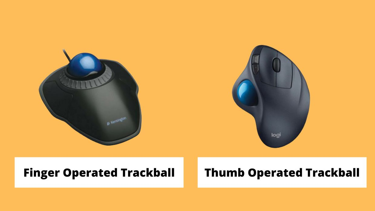 What is a trackball mouse