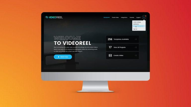 VideoReel Review and Price